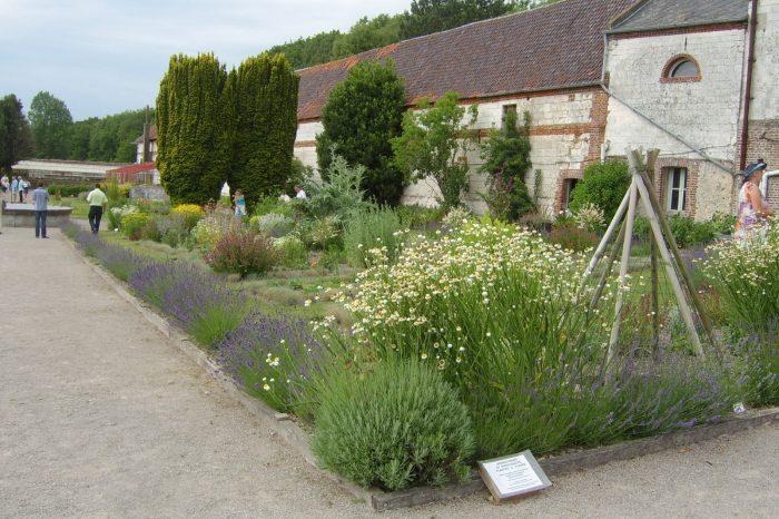 jardin-chartreuse
